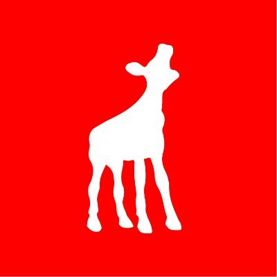 Squerist Nieuws giraffe